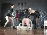 Stock Caning